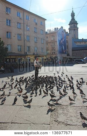 Lviv - circa August 2013: man feeds a lot of pigeons on the road in the central part of Lviv. circa August 2013 in Lviv, Ukraine.
