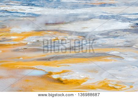 Hot springs, geysers, steam and bacteria in Norris Geyser Basin in Yellowstone National Park poster