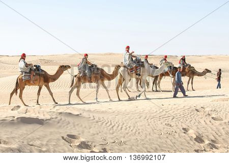 Tourists On Camels In Sahara