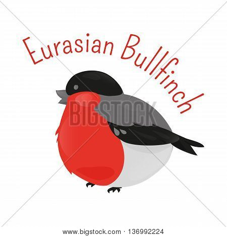 Eurasian cartoon bullfinch isolated on white background. Small passerine bird in the finch family Fringillidae. Child fun pattern icon. Part of series of various species. Fauna. Ornithology. Vector