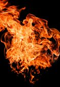Fire flames raising high over black background poster