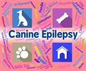 Canine Epilepsy Showing Pet Puppies And Fits poster