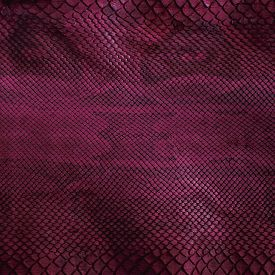 Violet snake skin with pattern reptile close up