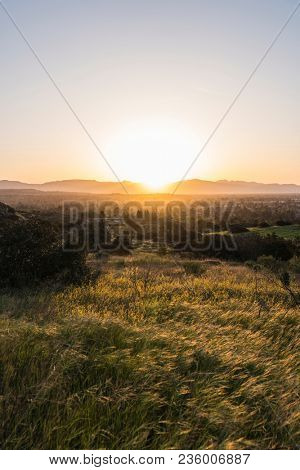 Vertical sunrise view of spring meadow at Santa Susana State Historic Park in the San Fernando Valley area of Los Angeles, California.
