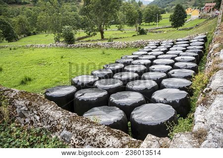 Bales Of Silage In A Field In Somiedo Nature Reserve, Principality Of Asturias, Spain