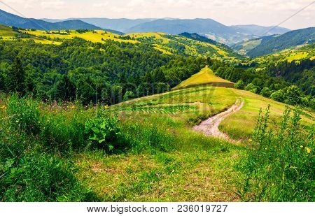 Country Road Along The Hill. Beautiful Summer Landscape