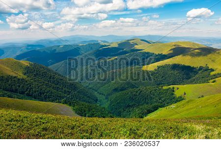 Rolling Hill Of Carpathian Mountains. Beautiful Summer Landscape