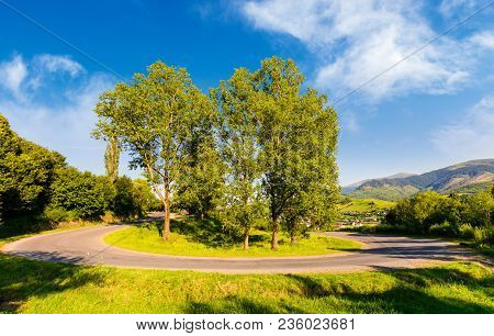 Serpentine Road Turnaround Among Tall Trees. Lovely Transportation Scenery In Mountainous Area. Wond