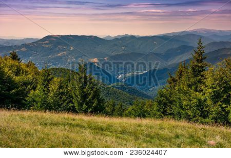 Forested Hills Over The Brustury Valley At Sunset. Gorgeous Mountainous Landscape, Transcarpathia, U