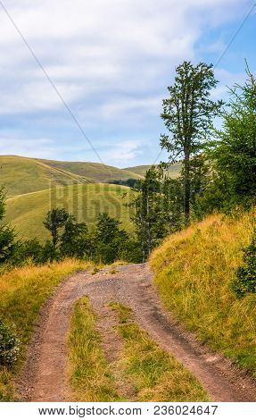 Truck Road Through Forested Hills Of Carpathians. Beautiful Landscape With Svydovets Mountain Ridge
