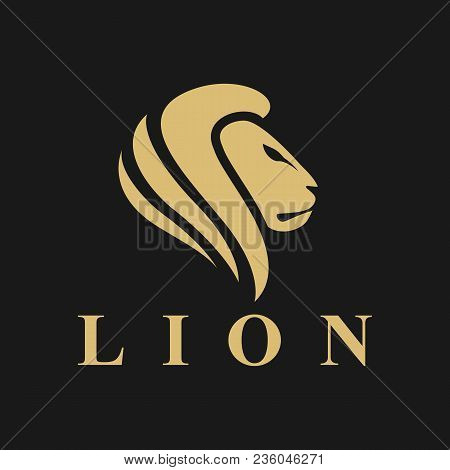 Lion Logo. Lion Head Vector. Lion Head Logo. Lion Icon. Lion King. Animal Logo. Vector Logo Template