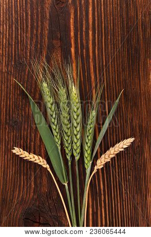 Yellow And Green Ears Of Wheat From Above On Wooden Table.