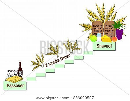 Feast Of Shavuot. The Counting Of The Omer Between The Passover And The Shavuot. Wine, Matzo, Fruit,