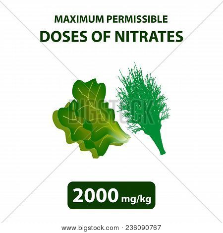 The Maximum Allowable Dose Of Nitrates In Dill, Salad. Nitrates In Vegetables And Fruits. Infographi