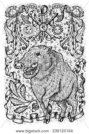 Pig Symbol With Heraldic Weapon, Baroque Elements And Vignette Ribbons. Fantasy Vector Illustration