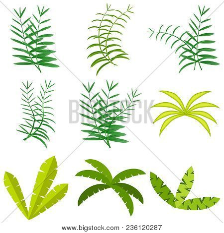 Palm Leaves, Green Palm Leaves. A Set Of Palm Leaves. Flat Design, Vector Illustration, Vector.