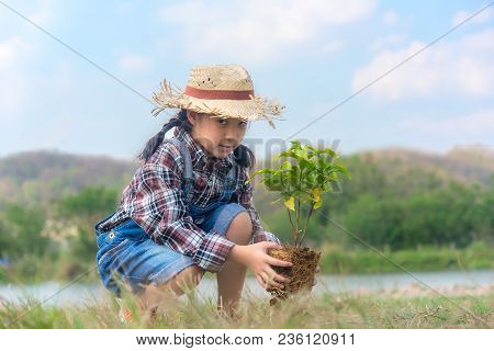 Asian Child Girl Plant Sapling Tree In The Nature Spring For Reduce Global Warming Growth Feature An