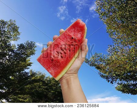 Hand Holds A Watermelon Slice Against A Blue Sky,summertime, Watermelon Lover, Summer Sale Concept.
