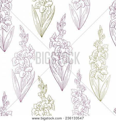 Gladiolus Flower Graphic Color Seamless Pattern Background Sketch Illustration Vector