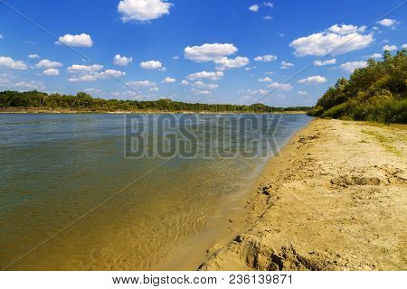 Summer Day. Sand. Yellow Sand. River. Nature. Trees. Beach. Riverside. Water. Waves On The River.