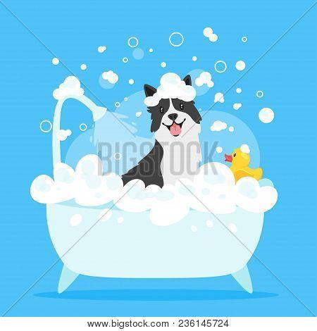 Vector Cartoon Style Illustration Of Cute Border Collie Dog Taking A Bath Full Of Soap Foam. Yellow