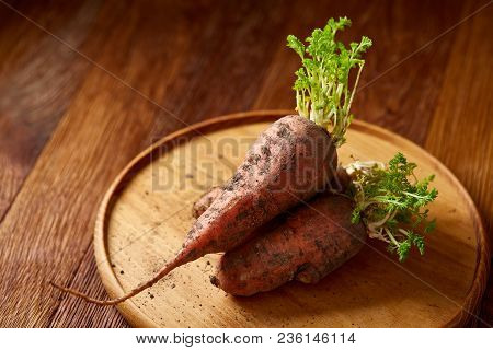 Bundle Of Carrots With Soil On Wooden Plate Over Rustic Wooden Background, Side View, Close-up, Sele