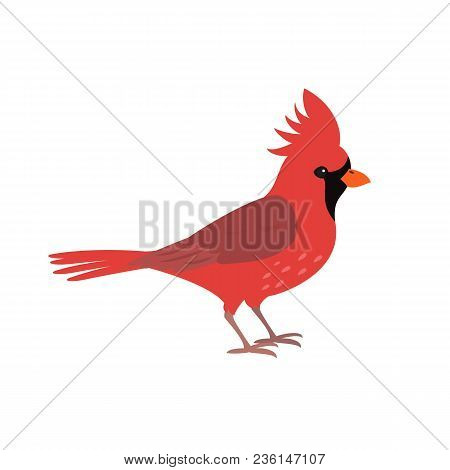 Northern Red Cardinal Icon On White Background. Vector Illustration.
