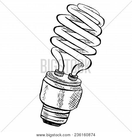 Compact Fluorescent Vector Photo Free Trial