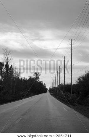 Roadway In Grey