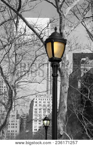 Monochrome of Battery Park, Street Lamps in Colour, New York