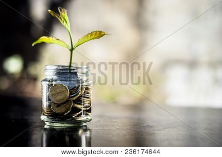 A glass jar full of coins and plant growing through it.  Concept of savings, interest,  fixed deposits, pension,  social security cheque .; poster