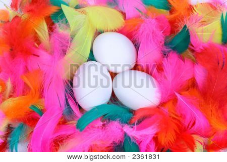Easter Eggs In A Nest Of Colored Feathers
