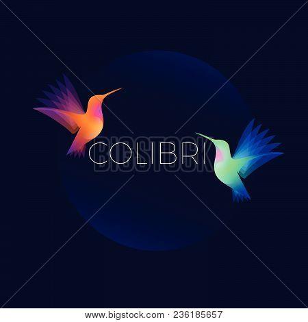 Hummingbirds Or Colibri Logo. Two Colorful Hummingbirds On Dark Background.