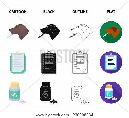 Hospital, Veterinarian, Dog, Thermometer .vet Clinic Set Collection Icons In Cartoon, Black, Outline