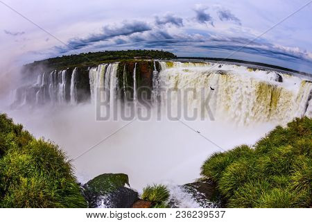 The rainy season. Devil's Throat is the most grandiose part of the Iguazu Falls. Andean condors fly above the roaring water. Concept of active and photographic tourism