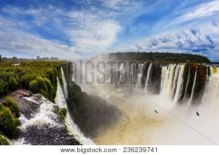 Andean condors fly above the roaring water. Devil's Throat is the most grandiose part of the Iguazu Falls. The rainy season. Concept of active and photographic tourism