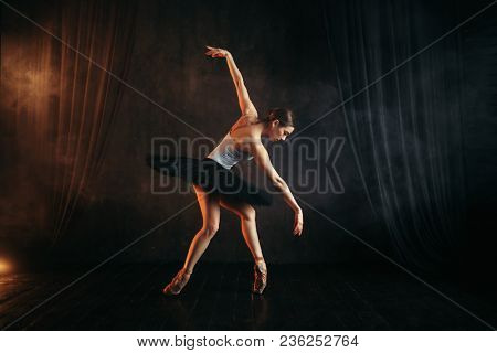 Elegance ballerina in action on theatrical stage