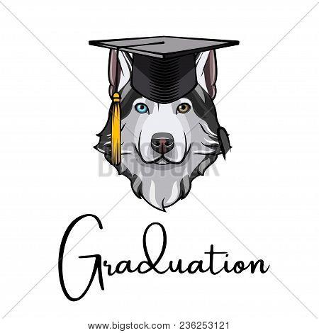 Husky Dog Graduate. Graduation Hat Cap. Siberian Husky. Vector Illustration