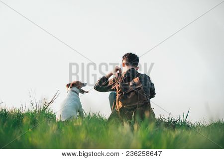 Teenager on green lawn with small white dog. Friendship and travel concept