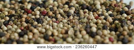 Pepper, Dried And Used As A Spice And Seasoning.