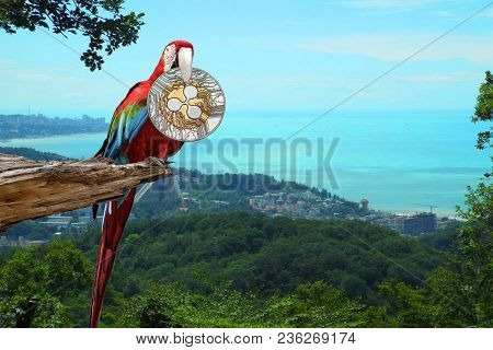 Colorful Macaw Sitting On Broken Tree With A Silver Ripple Coin In Its Beak On The Background Of Mou
