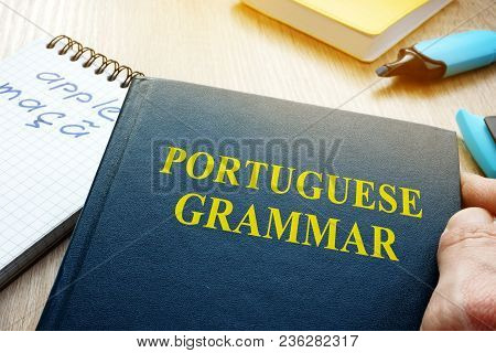 Learn Portuguese Grammar. Hand Is Holding Book.