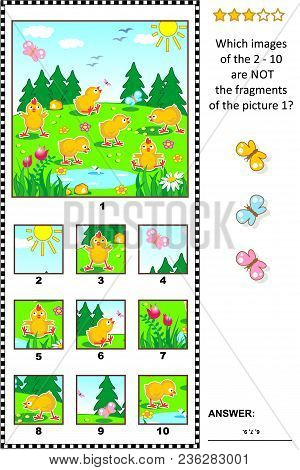 Spring, Easter Or Summer Visual Logic Puzzle With Happy Playful Chicks Feeding Outdoor: What Of The