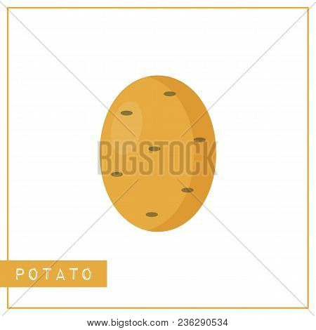 Bright Memory Training Card With Colorful Vegetable. Flat Design Isolated Brown Color Potato With Sh