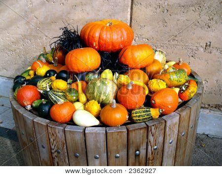 Pumpkins In A Barrel