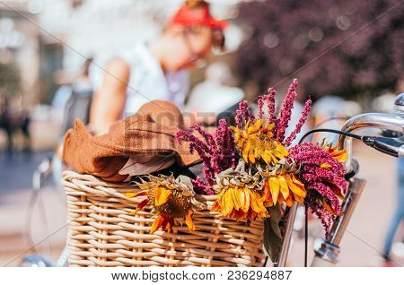 Beautiful Autumn Dried Sunflowers And Violet Wildflowers In A Wicker Bicycle Basket. Retro Pin Up Gi