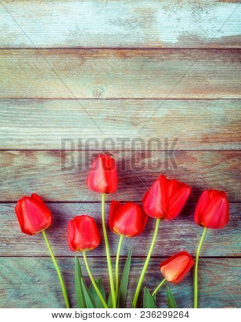 Bouquet Of Red Tulips On Light Blue Wooden Retro Grunge Background With Copy Space. The Concept Of M