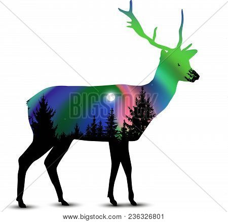 Silhouette Of Deer With Coniferous Trees On The Background Of Colorful Sky.  Moon. Night. Northern L