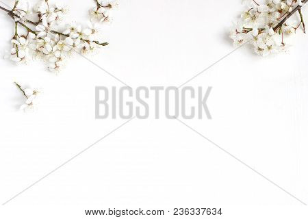 Spring Prunus, Cherry Blossoms On A Old White Wooden Table. Feminine Still Life Floral Composition,