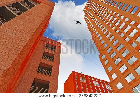 A Bird Flying In The Sky Framed Between Several Different Skyscraper Buildings In A Wide Angle View.